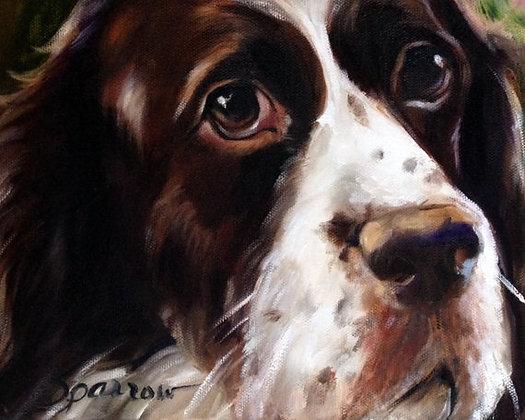 PRINT Springer Spaniel Dog Face Art Print