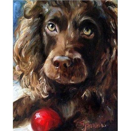 PRINT Boykin Spaniel Dog