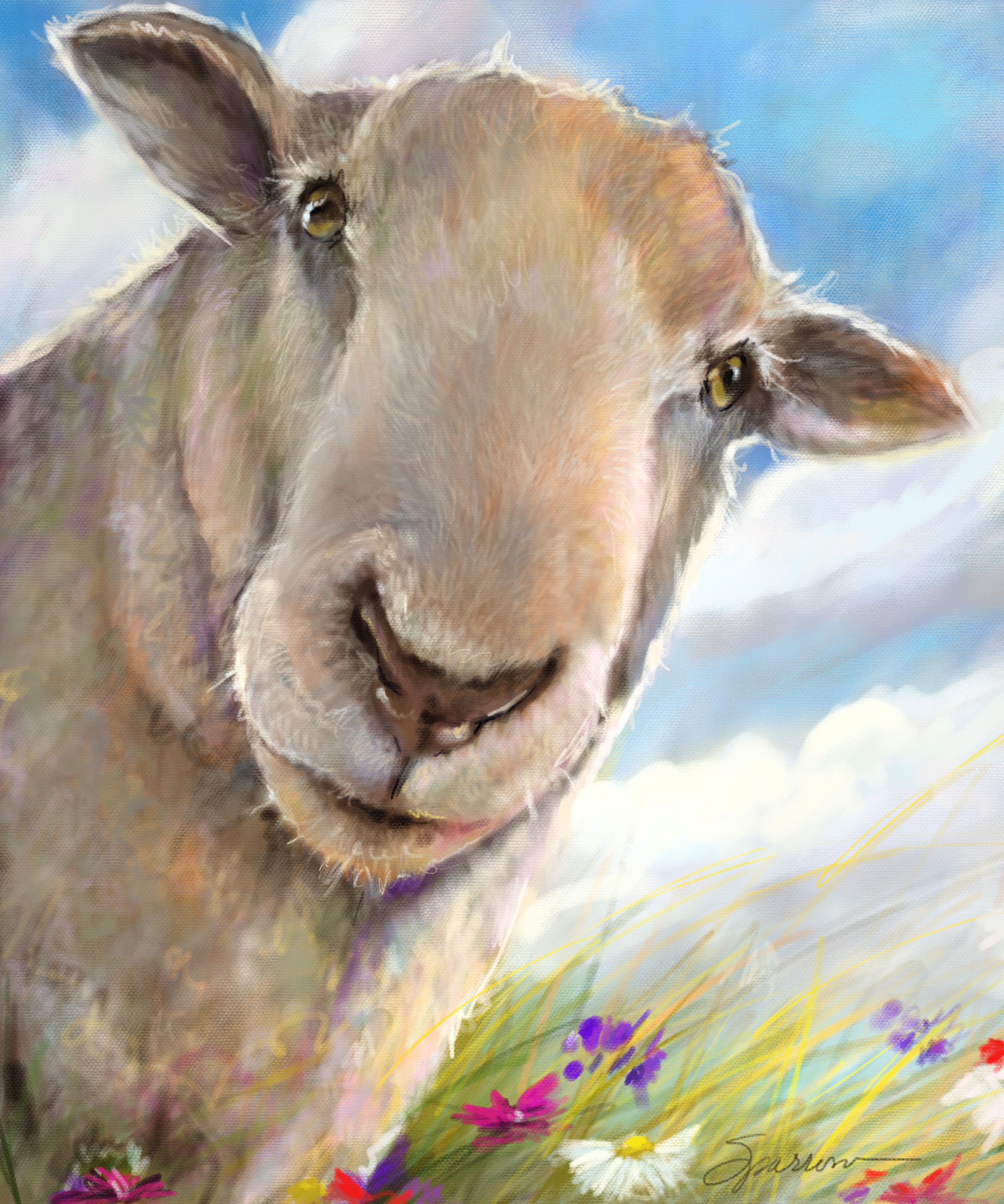 Eyes on Ewe