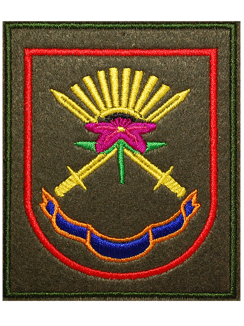Нарукавный шеврон ВС РФ (вышивка)