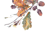 leaves_trans copy_edited_edited.png