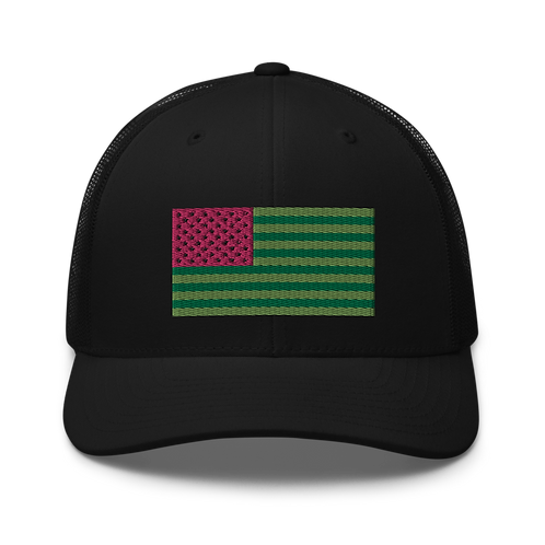 United States of Watermelon Hat
