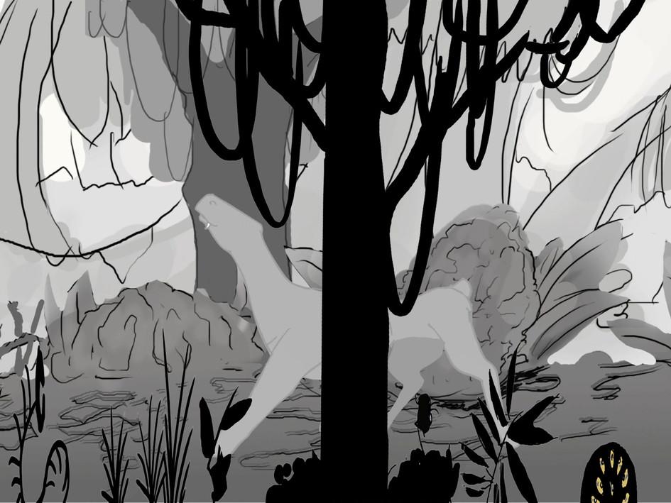 TooF's walk in the woods