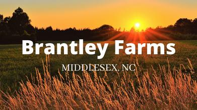 Brantley Farms