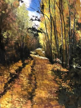 V129 - Golden Trail