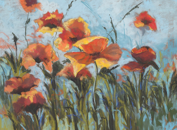 V131 - Orange Poppies Against The Blue Sky
