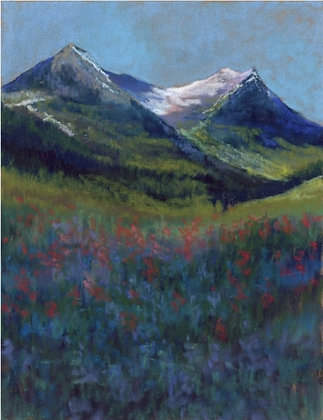 V112 - The Wildflowers of Wyoming