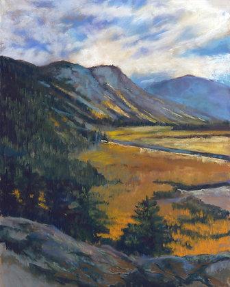 104 - Meadow