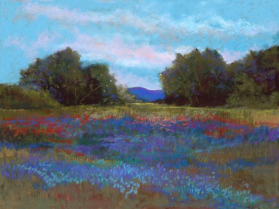 V58 - Purple Field