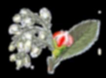 Microblading, Breckenridge, Colorado, Makeup Artist, Eyebrow Wax, Brow Shaping, Eyebrow Tinting, Eyebrows, Microshading, Breckenridge colorado, Airbrush Makeup, breckenridge microblading, 3d brows, 6d brows, eyebrow embroidery, microshading