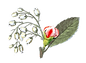 Healing Salon fennel | 岐阜県岐阜市 | タロットカード | 占い