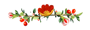 Picture of flower on natural soap for sale page.