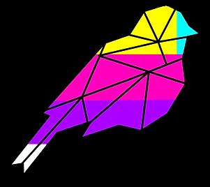Multi-Colored-Bird