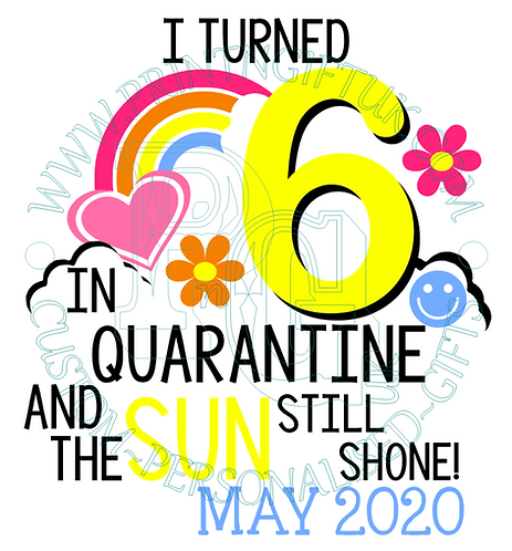 Quarantine Birthday T-shirt: Any Age
