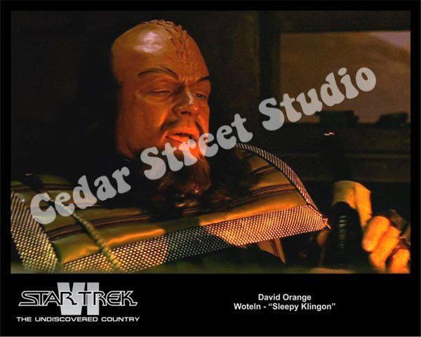 Actor David Orange Klingon Headshot.