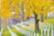 cementerio virginia .jpg