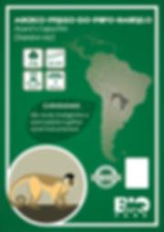 Macaco-Prego.jpg