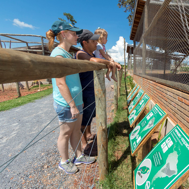Observação Bio Park