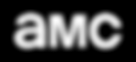 AMC_2013_logo.png