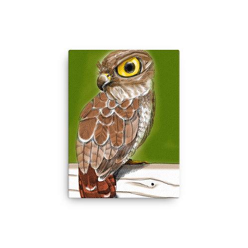 Owl Art Canvas