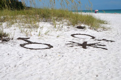 Astrology On the Beach