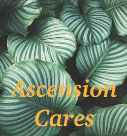 Ascension Cares