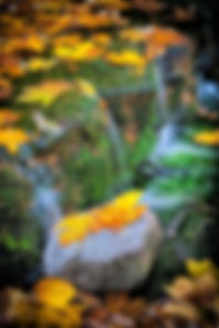 091027yosemite_072-Edit.jpg