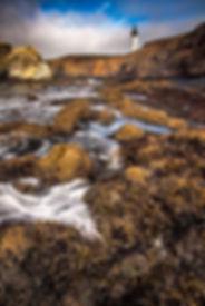 2015_08_Yaquina Head Oregon_0036-Edit.jp