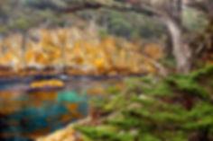 2011_01_Big Sur_0745.jpg