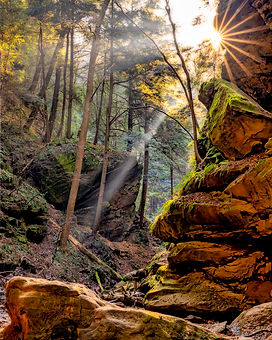 2019_11_Conkles Hollow_015-HDR-Edit.jpg