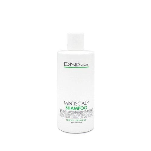 Mintiscalp Shampoo