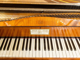 Fortepiano by Conrad Graf -(1835) restored by Edwin Beunk