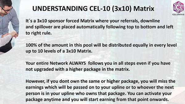 understanding cel-10 (3x10) matrix