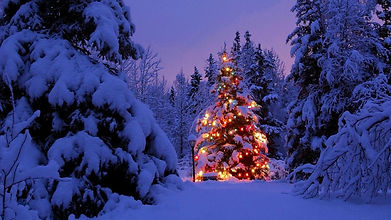 christmas_trees_garland_snow_park_party_