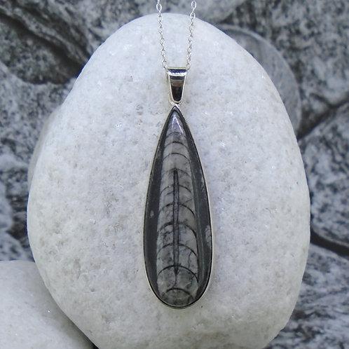 Orthoceras Sterling Silver Pendant