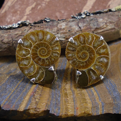 Ammonite  Sterling Silver Cufflinks