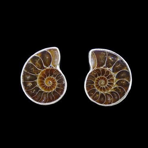 Ammonite Sterling Silver Large Stud Earrings