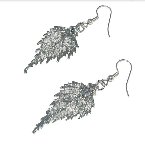 Birch Silver Earrings