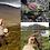 Thumbnail: Connemara Marble Sterling Silver Celtic Pendant