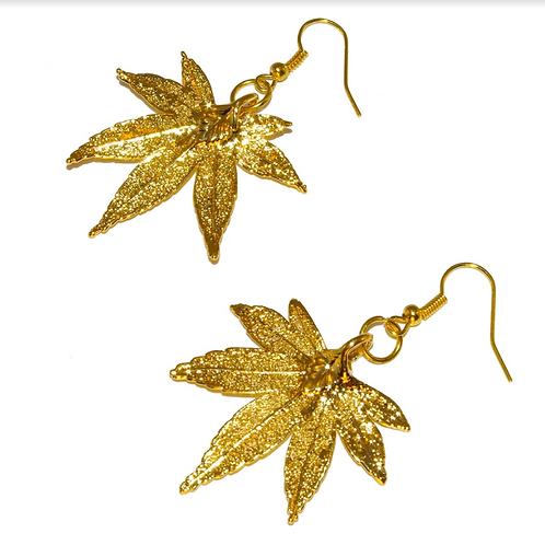 Japanese Maple Gold Earrings