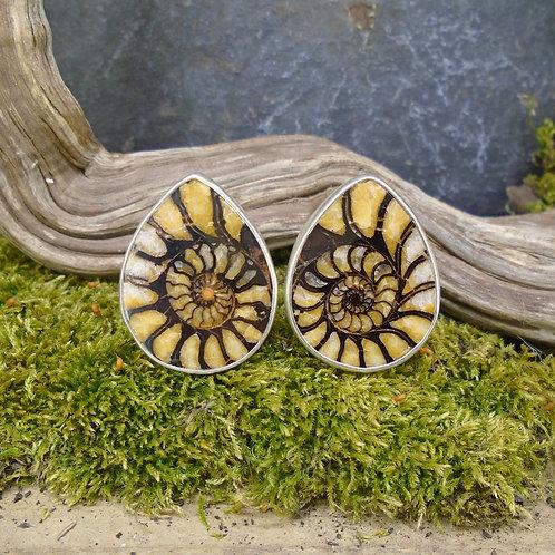 Rare Haematite Ammonite Sterling Silver Cufflinks