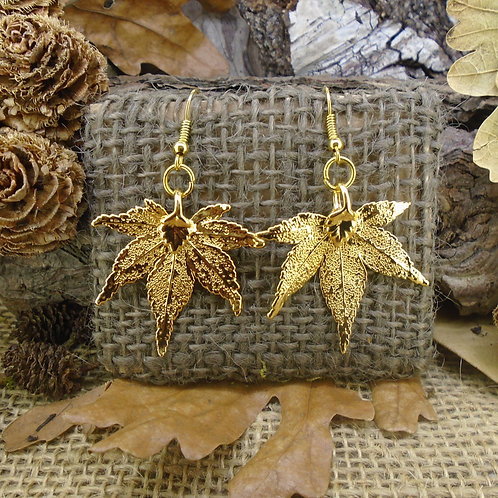 Japanese Maple Leaf Earrings - Gold