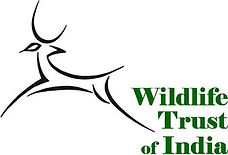 WTIStack-logo_green.jpg