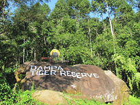 Dampa Tiger Reserve.jpg