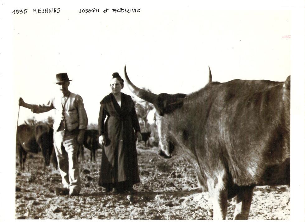 Joseph Apolonie Janvier 1935