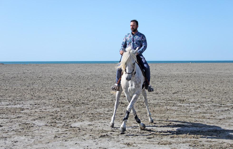 Dressage cheval Camargue plage