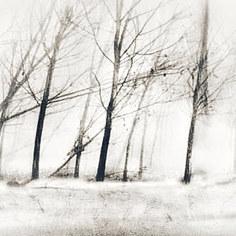 winter is coming #got