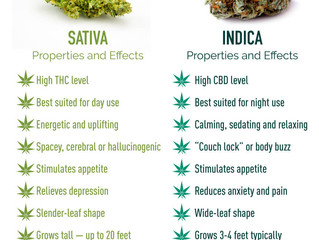 Indica or Sativa for Sleep?
