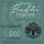 Barrie Bodhi Yogafest WEB.png