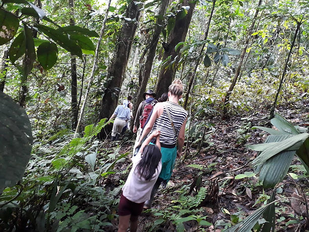 Walking through the rainforest with one of the village children